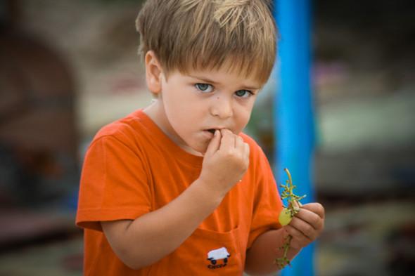 POLEVOY 3. 0: Дети. Изображение № 16.