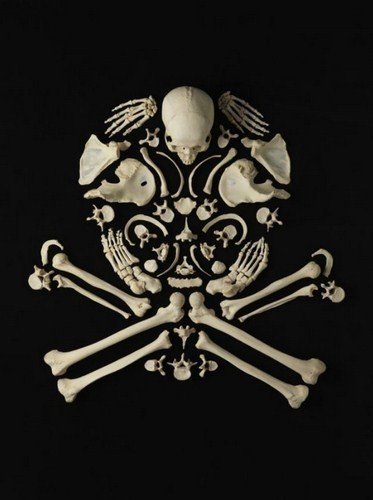 Изображение 9. Череп и кости.. Изображение № 9.