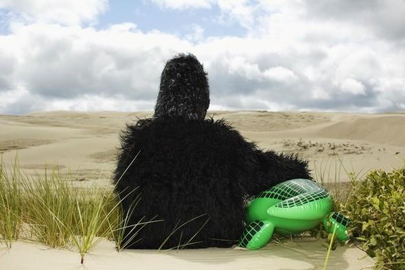 Мужская обувь: Shoe the Bear SS 2012. Изображение № 20.