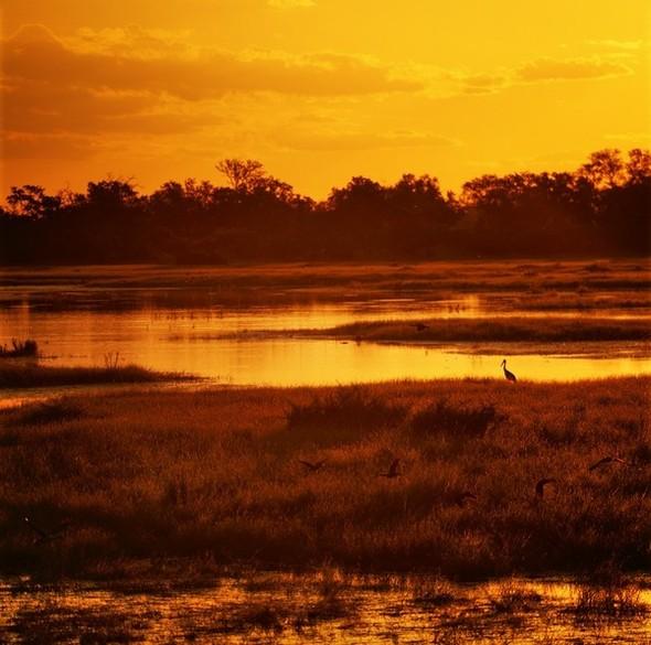 Ботсвана. Изображение № 10.