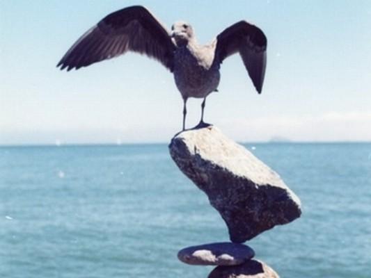 Rock on, RockON!. Изображение № 7.