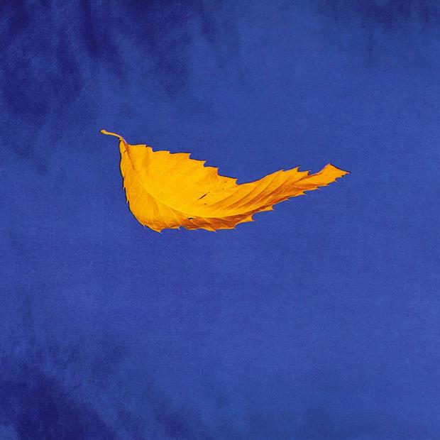New Order — True Faith (1987). Изображение № 10.