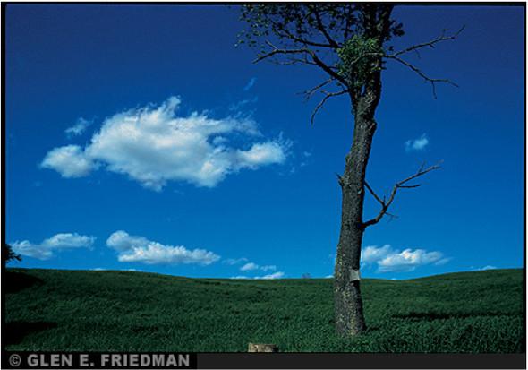 Изображение 72. Glen E. Friedman.. Изображение № 88.