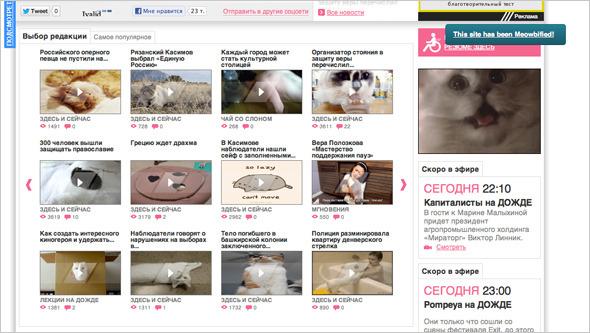 Котировка сайтов: Как заполнить любой сайт мигающими котами. Изображение №11.