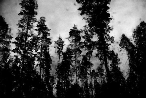 Андерш Петершен - живая легенда шведской фотографии. Изображение № 28.