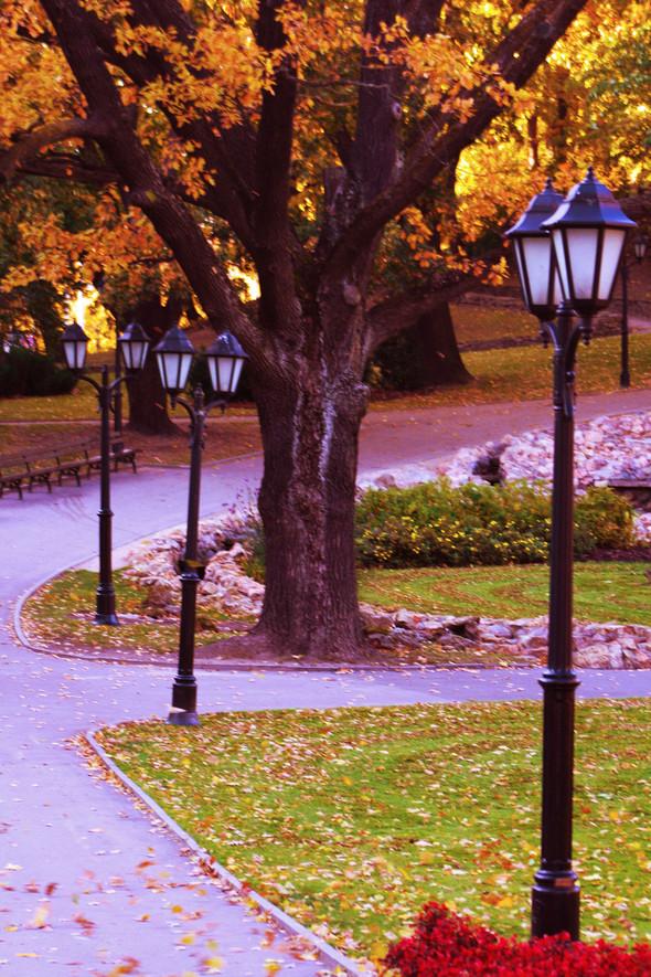 Золотая осень в Риге. Изображение № 5.