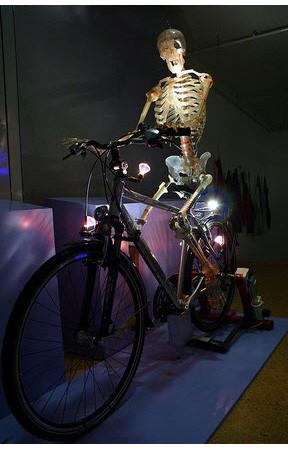 В поисках «Немо»: Гид по мировым музеям науки. Изображение № 118.