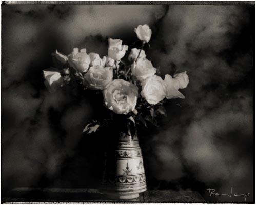 Роберт Вано «Платиновая коллекция». Изображение № 2.