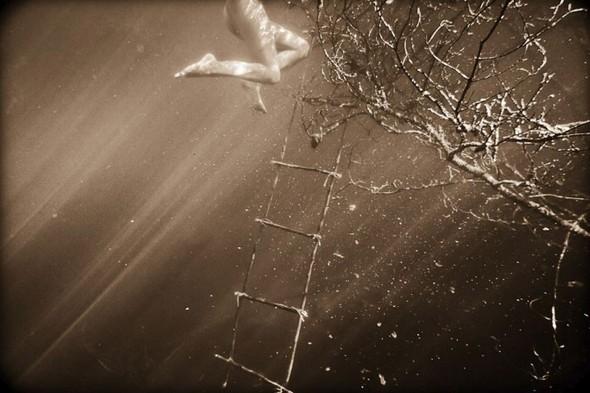Подводная съемка OmniPhantasmic. Изображение № 16.