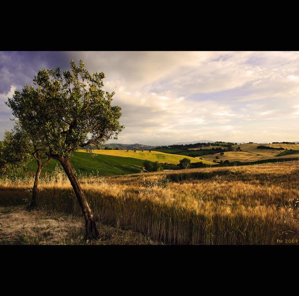 Завораживающие пейзажи fotomassimo. Изображение № 10.