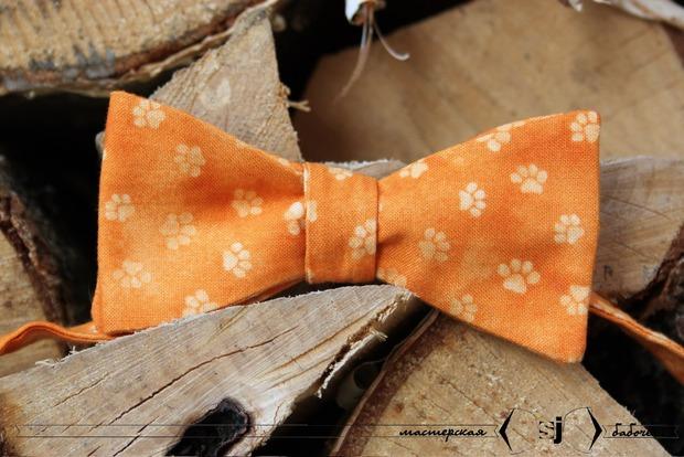 Осенне-зимняя коллекция бабочек в интернет-магазине WhereWear. Изображение № 26.