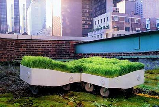 Дизайн-трава. Изображение № 3.