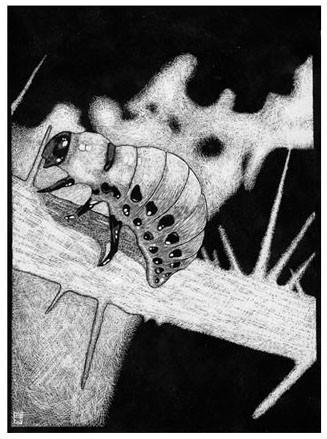 Аксель Торвениус. Смерть, женщины, искусство. Изображение № 7.