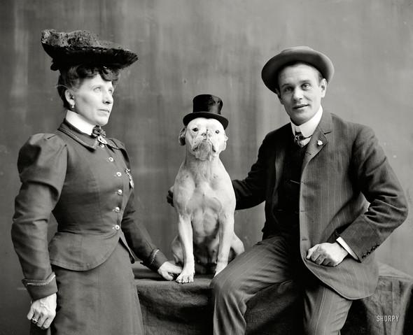 Фотографии с животными, начало прошлого века. Изображение № 3.