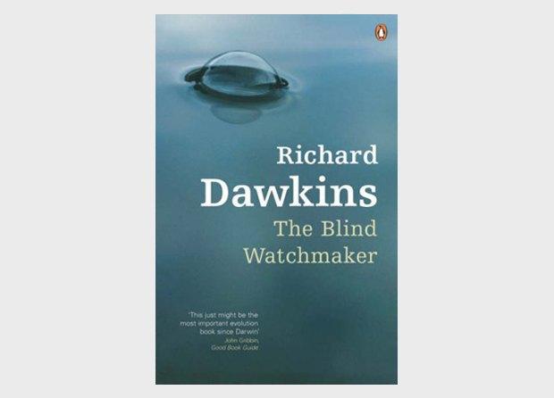 Как Ричард Докинз доказывает, что Бога нет . Изображение № 7.