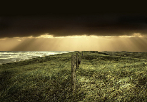 Фотография Ларса ван де Гоора. Изображение № 12.