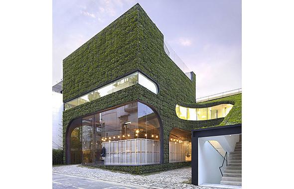Зеленая архитектура. Изображение № 41.