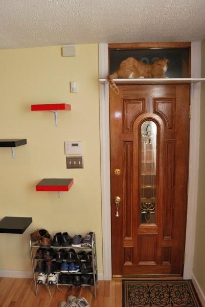 IKEA - интерьер для котов. Изображение № 9.