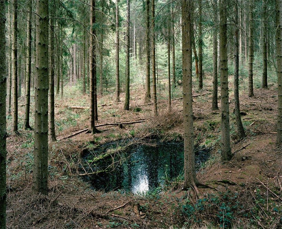 Галерея: как война изменила леса Германии. Изображение № 12.