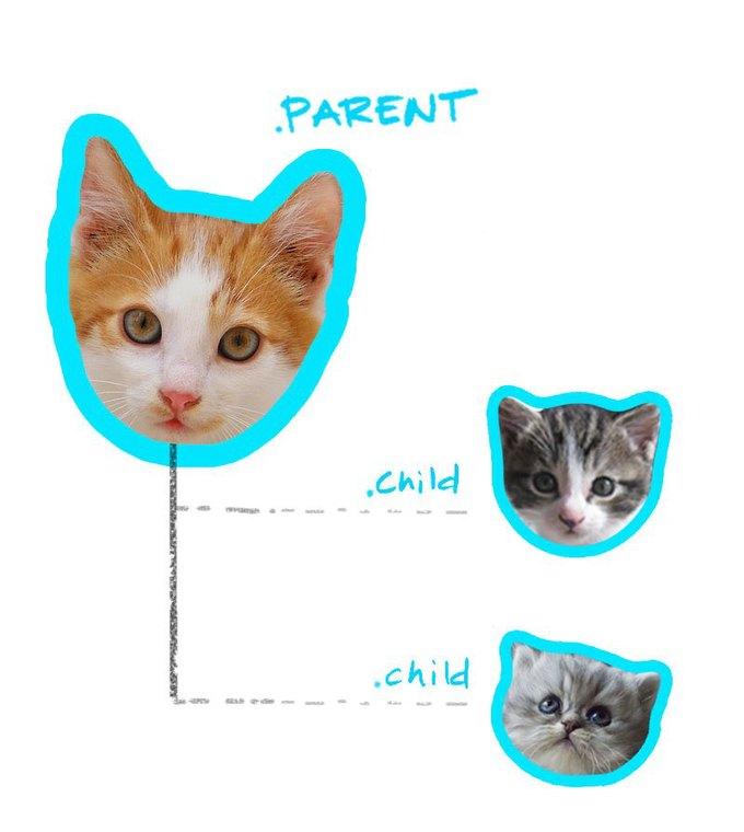 Работу CSS-селекторов объяснили на картинках с котами. Изображение № 2.