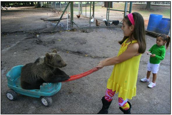 Lujan Zoo. Изображение № 10.