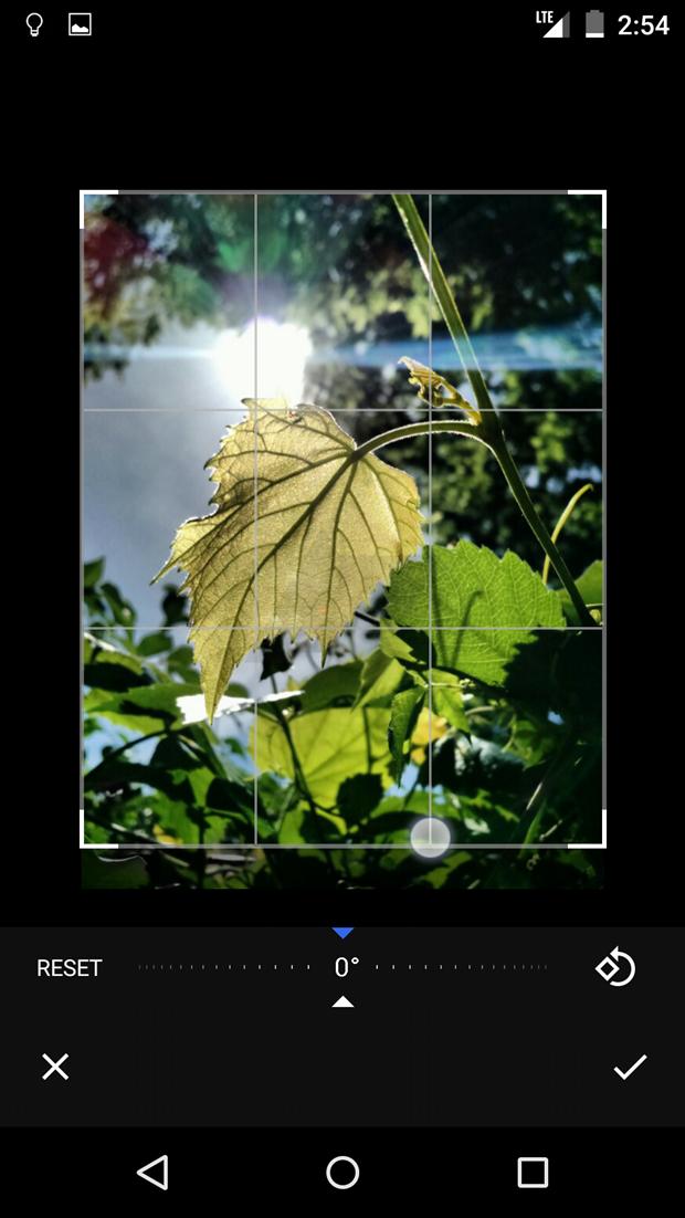 СМИ выложили скриншоты приложения Google для фотографий . Изображение № 21.