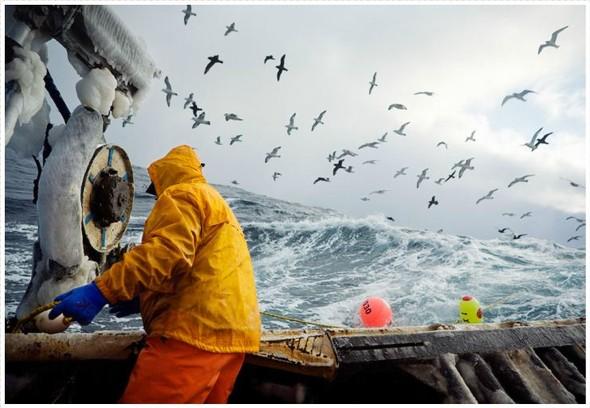Corey Arnold. Морская фотография. Изображение № 3.
