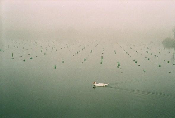 Изображение 14. Фотограф: Юань Сяопень.. Изображение № 14.