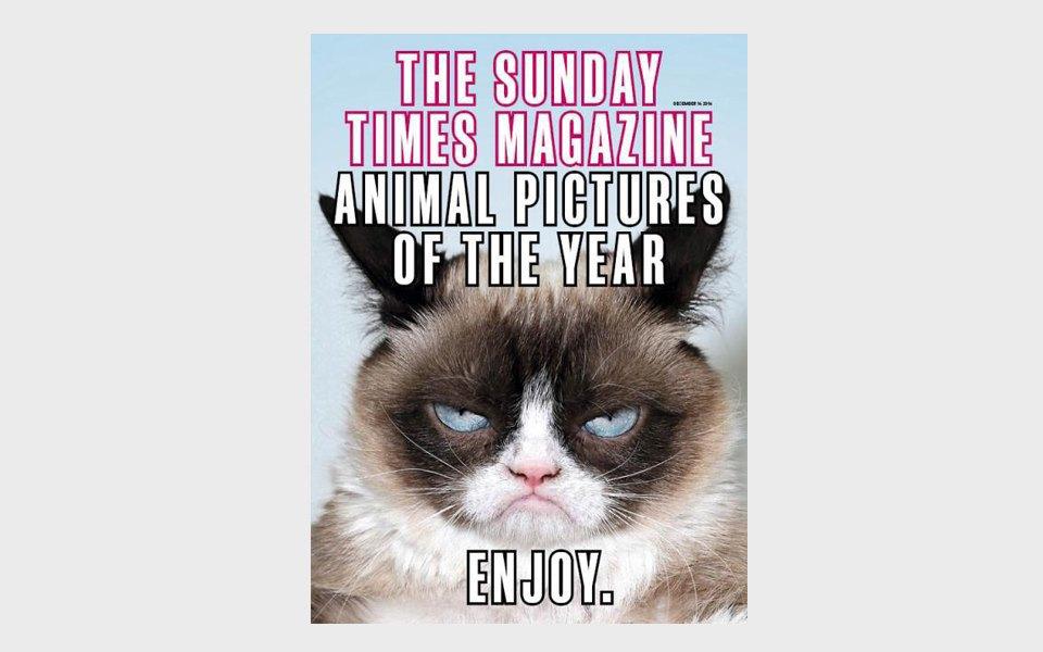 Главный редактор «Афиши» советует лучшие обложки года. Изображение № 17.