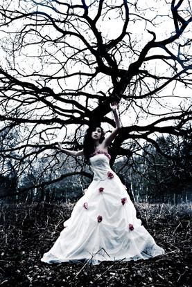Lara Jade. Изображение № 23.