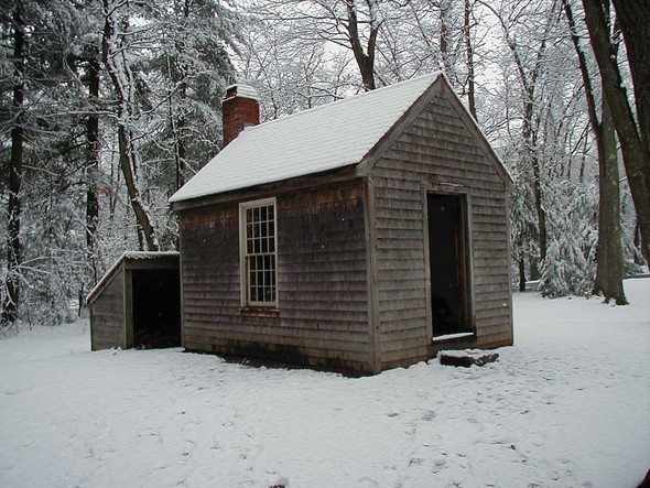 Thoreau's Cabin. Изображение № 2.