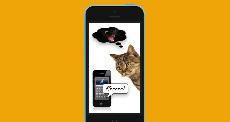 Язык животных: Как поговорить с собакой, дельфином и слоном. Изображение № 3.