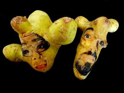 Картофельные портреты. Изображение № 19.