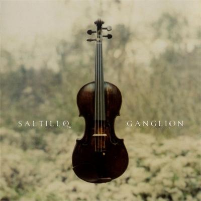 """Saltillo – """"Ganglion"""" (2006). Изображение № 1."""