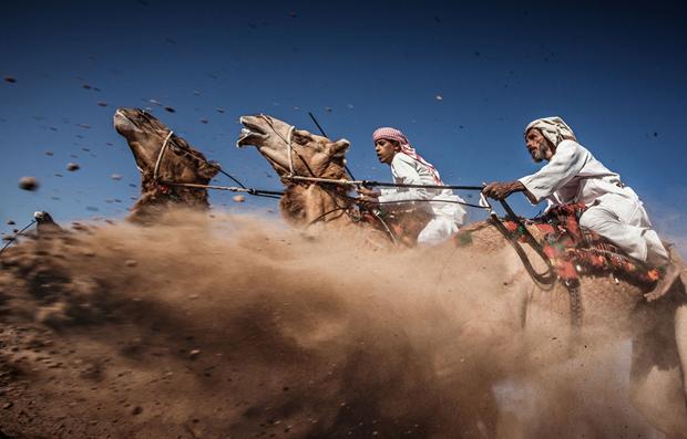 Третье место: традиционные скачки на верблюдах (арда) в Омане / Автор: Ahmed Al Toqi. Изображение № 3.