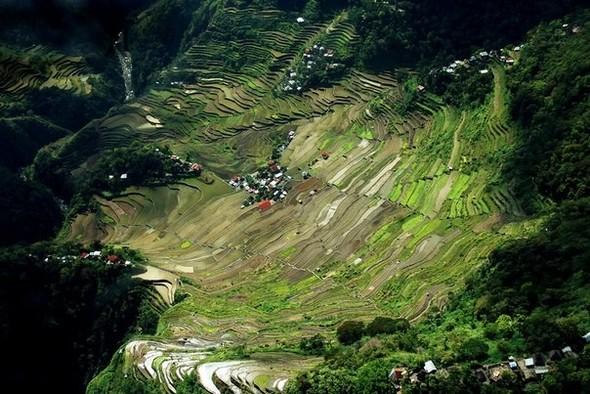 Где рис сажают тысячи лет…. Изображение № 3.