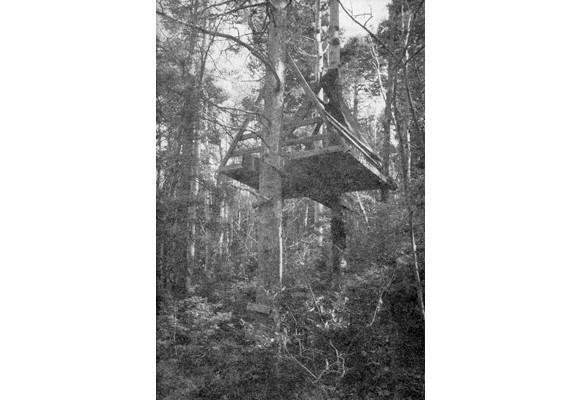 Издатель и фотограф: Николас Готтлунд. Изображение № 20.
