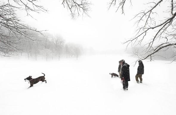 Взгляд на Нью-Йорк от фотографа Joseph O. Holmes. Изображение № 11.