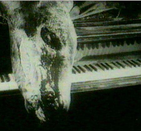 Прародитель ужастиков («Un chien andalou»). Изображение № 4.