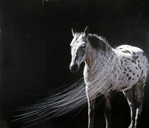 Работы канадского художника Андрэ Петтерсона. Изображение № 8.