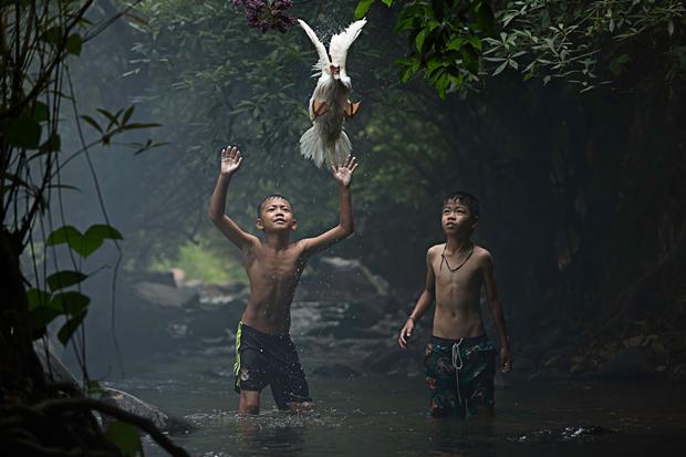 Двое мальчиков пытаются поймать утку (Таиланд) / Автор: Sarah Wouters. Изображение № 9.
