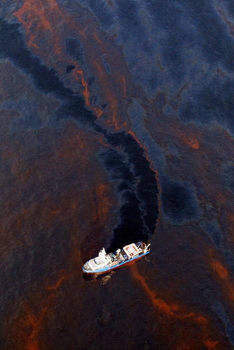 Крупнейшая экологическая катастрофа!. Изображение № 16.