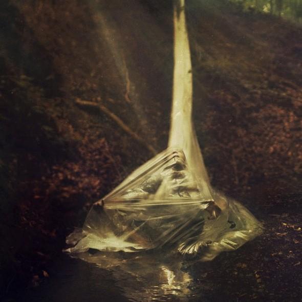 Nicholas Max Scarpinato Photography. Изображение № 19.