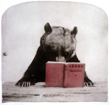 Григорий Майофис. Изображение № 16.
