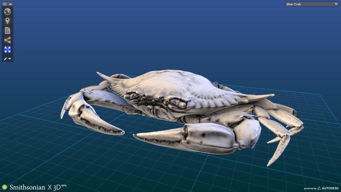 Музейные экспонаты можно будет распечатать на 3D-принтере. Изображение № 4.