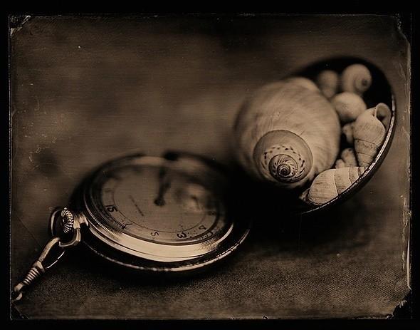Олег Журавлёв. Snails Of Time. Изображение № 7.