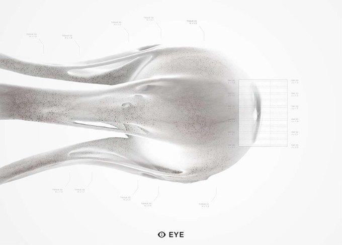 Стартап MHOX предложит заменить глаза на синтетические. Изображение № 1.
