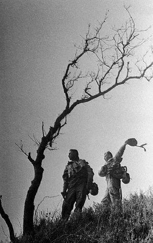Война ипобеда Евгения Халдея. Изображение № 26.