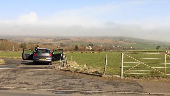 Великобритания: Цветные скалы, чесночная ферма и вкуснейшие бургеры на острове Уайт. Изображение № 37.