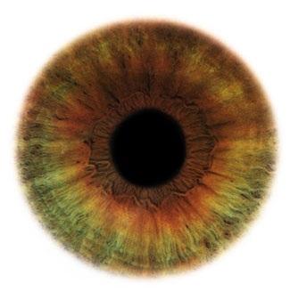 Фотограф Rankin — Eyescapes. Изображение № 13.